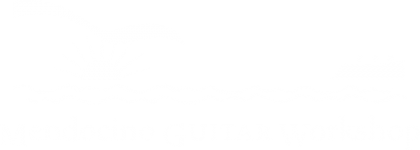Mendocino Guitar Workshop